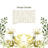 Watercolor herbs and flowers, background. Hand drawn Stock Photography