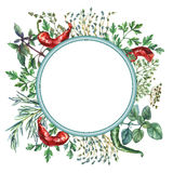 Watercolor herbs and spices frame. Stock Photos