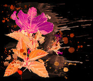 Watercolor - Hibiscus flower. Hibiscus flower - vector watercolor paint. Elements on separate layers stock illustration
