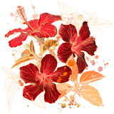 Watercolor - Hibiscus flower vector illustration