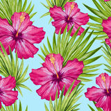 Watercolor hibiscus flower and palm leaves seamless pattern. Royalty Free Stock Photos