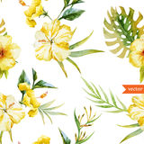 Watercolor, hibiscus, orchid, white, palm, tropical, pattern, background, wallpaper Stock Images