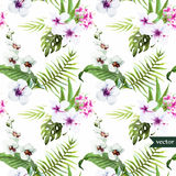 Watercolor, hibiscus, orchid, white, palm, tropical, pattern, background, wallpaper Royalty Free Stock Photography