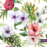 Watercolor, hibiscus, orchid, white, palm, tropical, pattern, background, wallpaper Royalty Free Stock Image