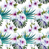 Watercolor hibiscus patterns Royalty Free Stock Photography