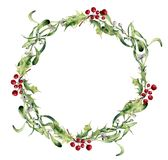 Watercolor holly and mistletoe wreath. Hand painted border floral branch and white berry isolated on white background Royalty Free Stock Photography
