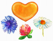 Watercolor Honey heart and flowers Royalty Free Stock Photo