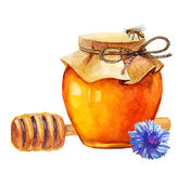 Watercolor Honey jar and honey stick. And cornflower over white Stock Images