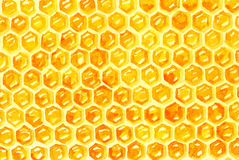 Watercolor Honeycomb background Royalty Free Stock Photography
