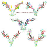 Watercolor horns entwined by flowers, leaves and plants Royalty Free Stock Photo