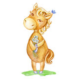 Watercolor horse hand drawn kid cartoon animal, domestic cute foal with flowers standing isolated on white background Royalty Free Stock Image