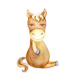 Watercolor horse hand drawn kid cartoon animal, domestic cute foal sitting isolated on white background, Character Stock Image