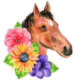 Watercolor horse portrait with yellow sunflowers isolated on a white background. Hand painting head of a brown horse