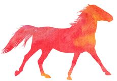 Watercolor horse silhouette Royalty Free Stock Photo
