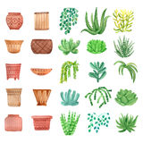 Watercolor houseplants in pots set Stock Images