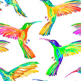 Watercolor hummingbirds seamless pattern. Vector. Royalty Free Stock Images