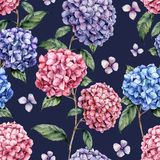 Watercolor hydrangea pattern. Hand painted blue, violet, pink flowers with leaves and branch isolated on dark blue. Background. Nature botanical illustration vector illustration