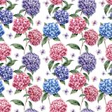 Watercolor hydrangea seamless pattern. Hand painted blue, violet, pink flowers with leaves and branch isolated on white. Background. Nature botanical royalty free illustration
