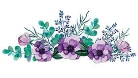 Watercolor illustration. anemones flowers, eucalyptus