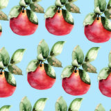Watercolor illustration of apples Stock Photography