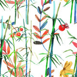 Watercolor illustration bamboo Royalty Free Stock Photography