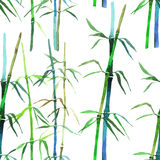 Watercolor illustration bamboo Royalty Free Stock Photo