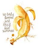 Watercolor illustration of  banana fruit. Stock Image
