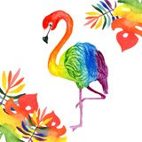 Watercolor illustration of a beautiful tropical exotic rainbow flamingo with tropical rainbow-colored leaves