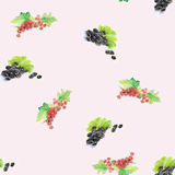 Watercolor illustration of berries. A watercolor illustration of different berries. Backgrounds and wallpapers for different projects Royalty Free Stock Photos