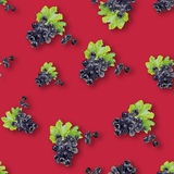 Watercolor illustration of berries. A watercolor illustration of different berries. Backgrounds and wallpapers for different projects Royalty Free Stock Images