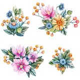 Watercolor illustration with bouquets of wildflowers stock illustration