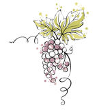 Watercolor illustration -- bunch of grapes Royalty Free Stock Photography