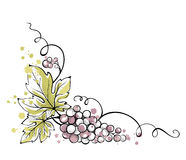 Watercolor illustration -- bunch of grapes Royalty Free Stock Image