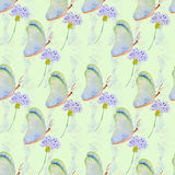Watercolor illustration of a butterfly on a flower. Backgrounds and wallpapers for different purposes Royalty Free Stock Images