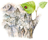 Watercolor illustration butterfly Royalty Free Stock Images