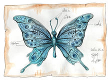 Watercolor illustration of butterfly Royalty Free Stock Photo