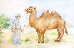 Watercolor illustration of camel and chasseur on desert backgrou. Nd. Egypt hand drawn scene Stock Photography