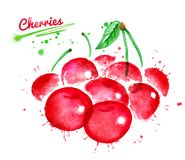 Watercolor illustration of cherries. With paint splashes Royalty Free Stock Photo
