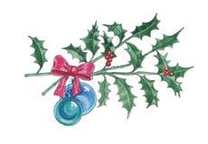 Watercolor illustration of Christmas branch of ilex. royalty free illustration