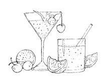 Watercolor illustration of cocktails and fruits. Handrawn watercolor sketch of cocktails and fruits Royalty Free Stock Photo