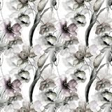 Watercolor illustration of colorful flowers. Seamless pattern Royalty Free Stock Photos