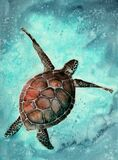 Watercolor illustration of a colorful sea turtle. Swimming in the vivid turquoise sea