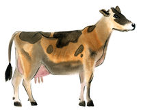 Watercolor illustration of a cow Stock Photo