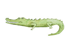 Watercolor illustration of crocodile hand drawn aquarelle Stock Photo