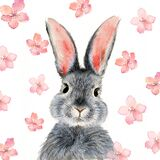 Watercolor illustration of a cute fluffy grey rabbit