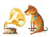 Watercolor illustration of a dog listening to music. Watercolor illustration of a dog listening to music through the gramophone records on white background Royalty Free Stock Photos