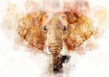 Elephant - watercolor illustration portrait royalty free stock photography