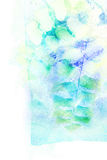 Watercolor illustration of fern. Royalty Free Stock Photos