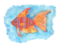 Watercolor illustration of fish Royalty Free Stock Image