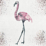 Watercolor illustration of a flamingo silhouette Stock Photos